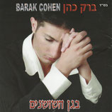 Barak Cohen - In The Roses Garden