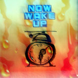 Rose-Room-Orchestra - Now Wake Up