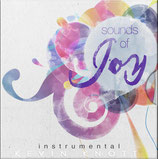 Kevin Knott - Sounds of Joy (Instrumental)