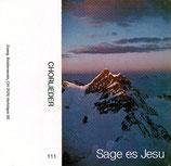 EBV - Sage es Jesu (Gitarrenchor, Männerchor, Gem.Chor des Evangelischen Brüdervereins)