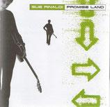 Sue Rinaldi - Promise Land
