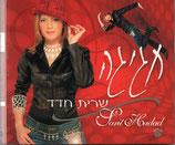 Sarit Hadad - Celebration