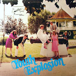 The Phillips Family - Youth Explosion