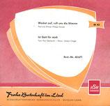 Chor und  Bläser der Bibelschule Beatenberg - Frohe Botschaft im Lied 45671