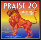 Maranatha Singers - Praise 20