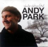Andy Park - Wonder Working God