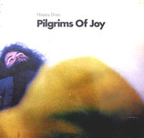 Pilgrims Of Joy - Happy Days