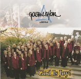 Gospelchor Liebefeld - God Is Joy