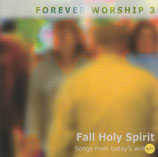 FOREVER WORSHIP 3 - Fall Holy Spirit : Songs from today's writers