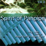 Gino Marinello - Spirit of Panpipe 3