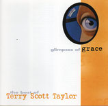 Terry Scott Taylor - Glimpse Of Grace