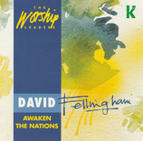 David Fellingham - Awaken The Nations (The Worship Leader)