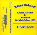 Chor der Freikirchen Zürcher Oberland - Hoffnung am Horizont - MC