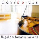 David Plüss - Flügel der Fantasie: Auszeit
