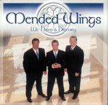 Mended Wings - We Have A History -