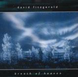 David Fitzgerald - Breath of Heaven