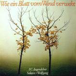 EC-Jugendchor & Wolfgang - Wie ein Blatt vom Wind verweht
