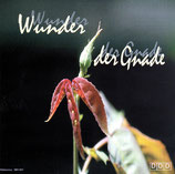Michel & Helene Hege - Wunder der Gnade