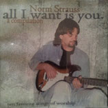 Norm Strauss - All I Want Is You