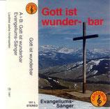 Evangeliums-Sänger - Gott ist wunderbar