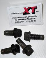 Schrauben Fußrasten / Screw Set Foot Pegs
