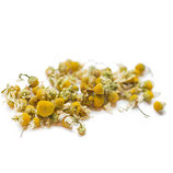 Camomile Delight