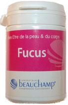 Fucus, boite de 60 gélules