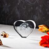 3D Laser Foto im Herz