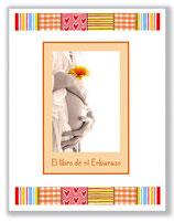 Libro de mi Embarazo