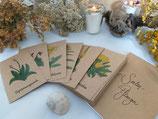 Seelenpflanzen-Kartenset