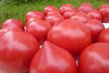 今季最後のトマト  サイズ大小