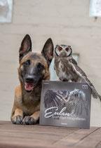 Eulen und Greifvögel fotografieren - Franzis Verlag