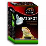 Heat Spot