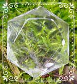 Feenstein - Bergkristall