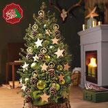 Little Santa® (Picea/Fichte) Der Baum für jeden Raum/Weihnachtsbaum (5 Liter Topf) 60 bis 70 cm