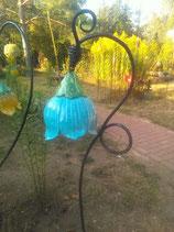 Glockenblume demnächst wieder vorhanden
