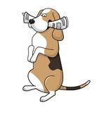 Praxistage Hundetrainer PLUS