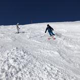 Privatskilehrer  / Private Ski Instructor