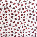 Coton Coccinelles - STOF Ladybird