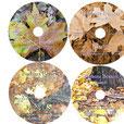 Luzern 11/2016 - Live - Aufnahme CDs I-IV