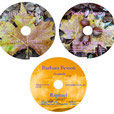 Pullach 10/2016 - Live - Aufnahme CDs I-III