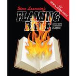 Feuer Bibel