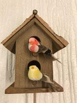 Vogelhäuschen Vögel rot/gelb