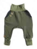 Knickebocker Moos 98/104