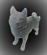 柴犬(特大)北海道/九州配送地域