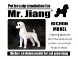 Bichon Model Dog本体土台