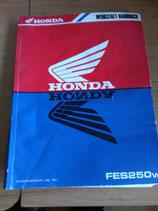 Honda FES 250 - Werkstatt-Handbuch + Zusatz im Paket