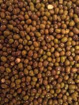 Fagioli verdi Mung