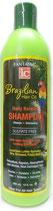 IC Fantasia Brazilian Hair Oil Daily Keratin Shampoo 355ml