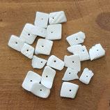 Conchiglie Scaglie Grezzo Bianche Forate 8mm